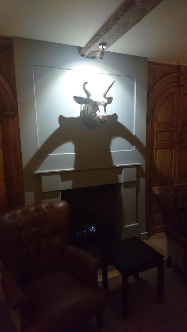 Тень от головы быка