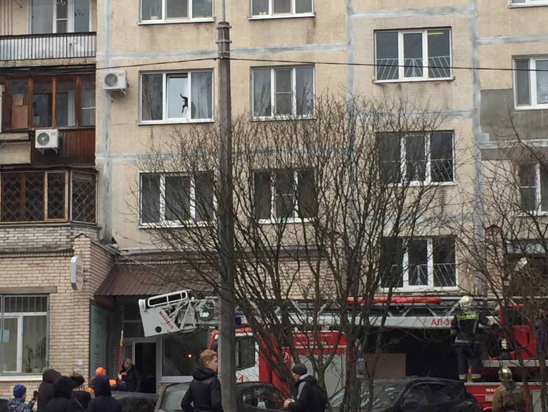 Два пожарных расчета спасали кота, застрявшего в стеклопакете на проспекте Культуры в Петербурге