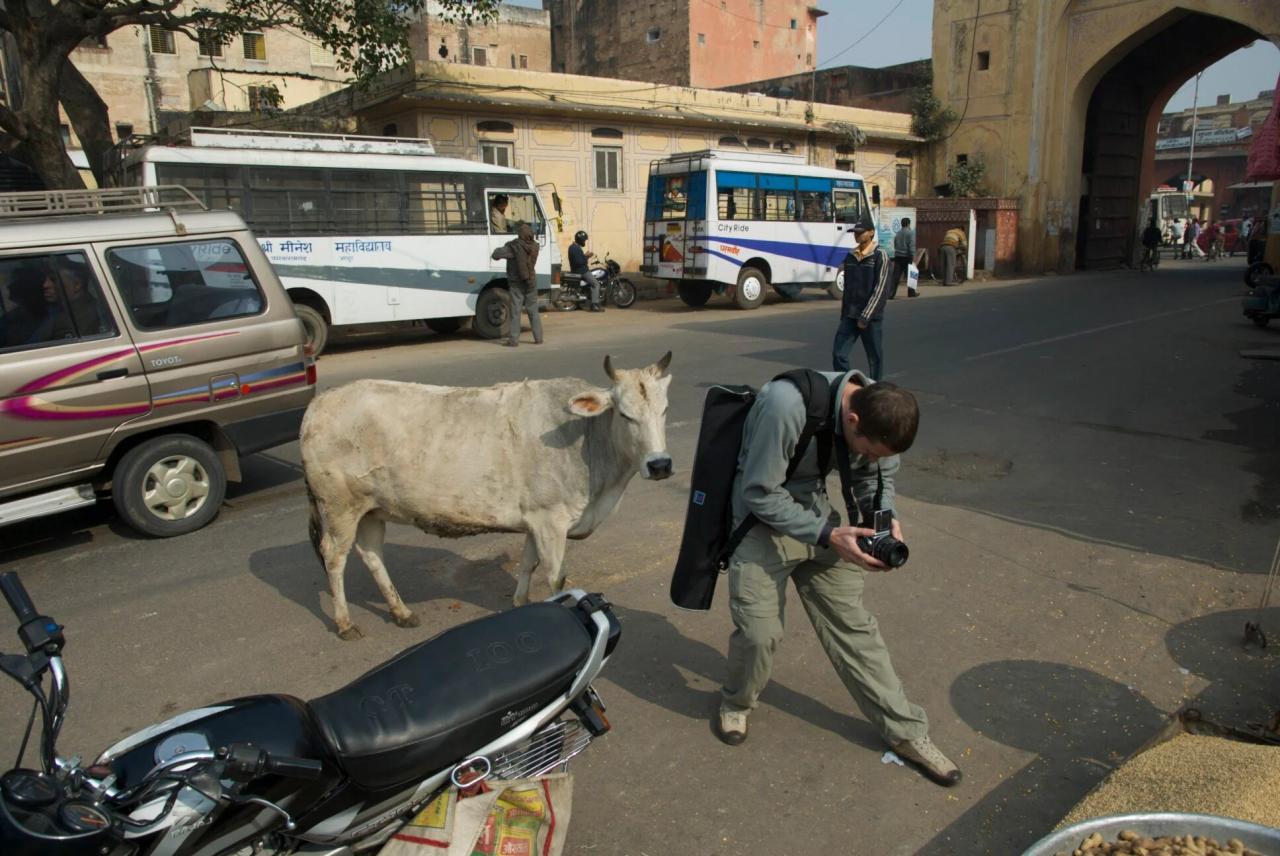 Почему я больше в Индию ни ногой