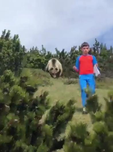 Марио и медведь