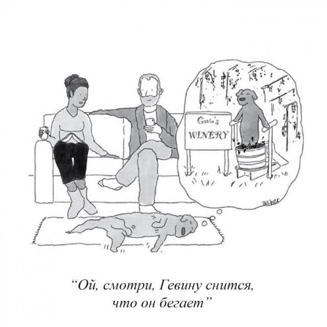 Интеллигентный юмор от журнала NewYorker