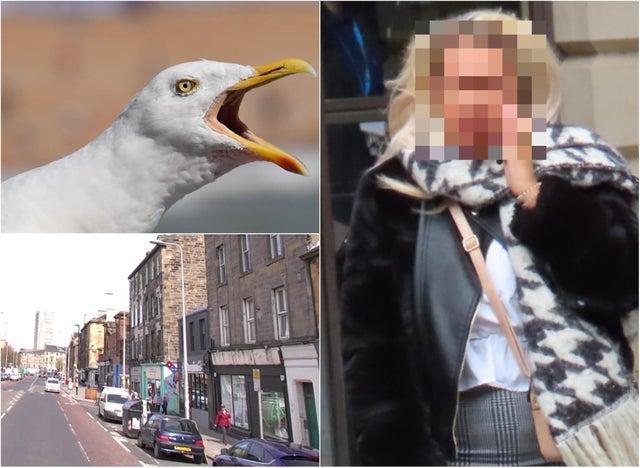 Женщина из Эдинбурга откусила мужчине язык в уличной драке. А потом прилетела чайка и съела его