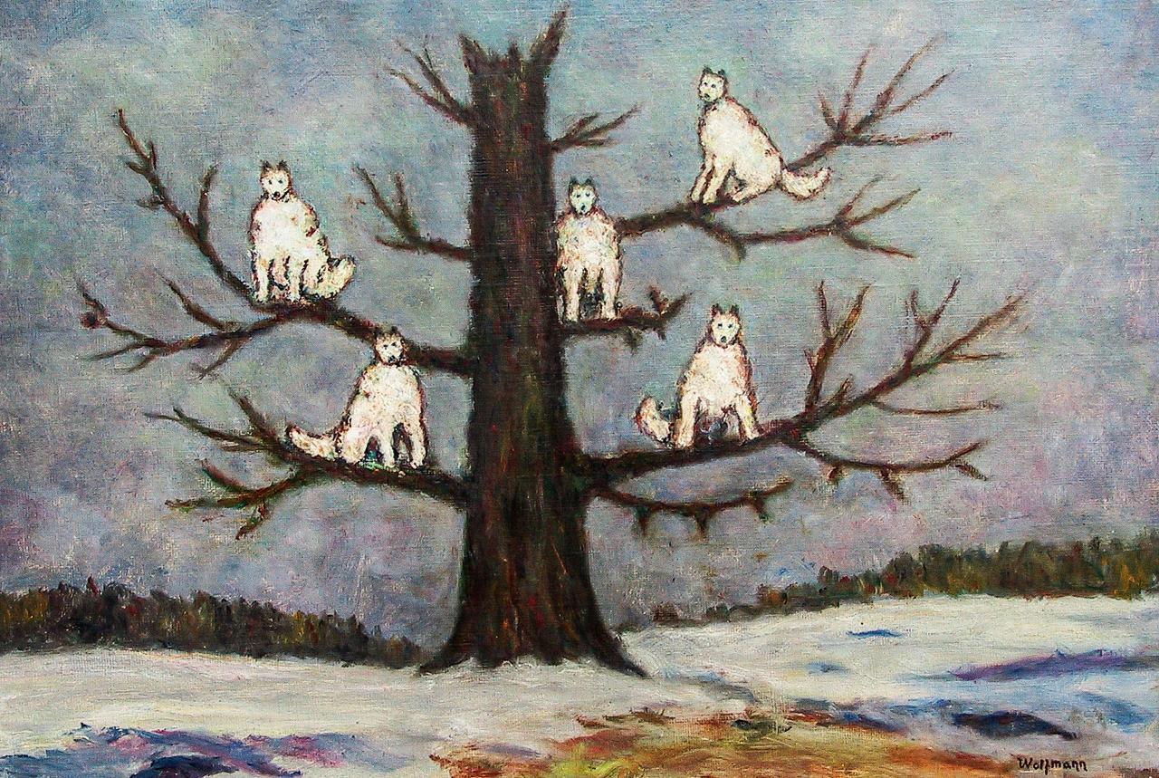 Бойся белых волков