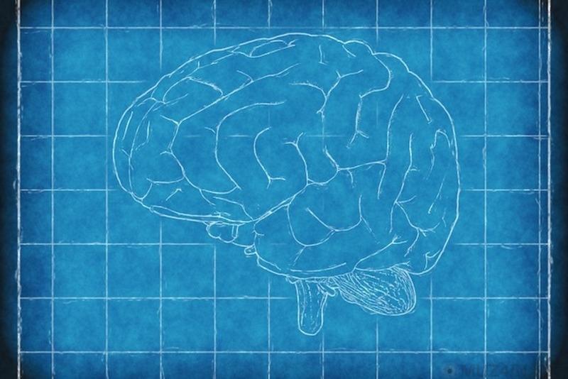 10 необъяснимых тайн мозга