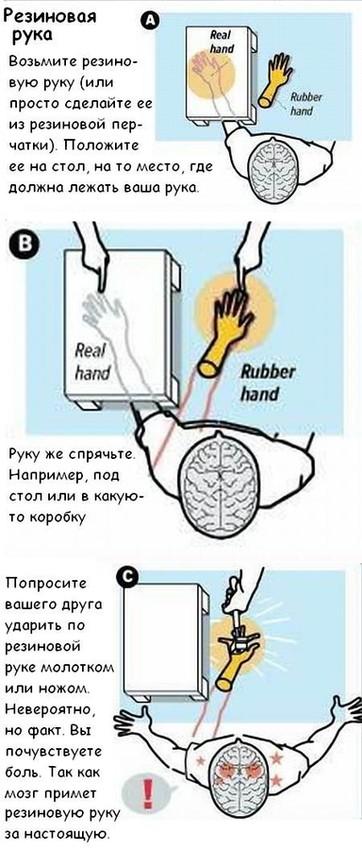 метод ганцфельда инструкция - фото 7