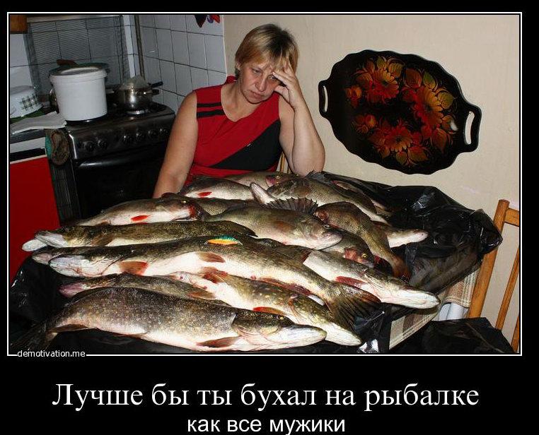 почему говорят июнь на рыбалку плюнь