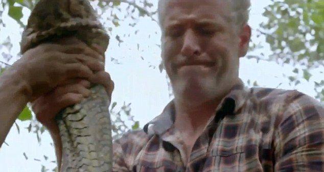 Телеведущий поймал в джунглях самую длинную змею в мире