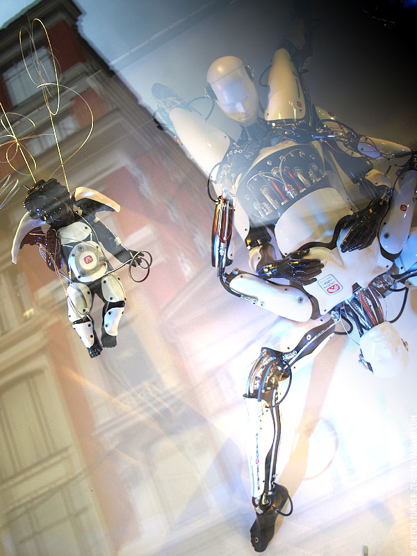 Эпротическая фантазия - секс роботов.